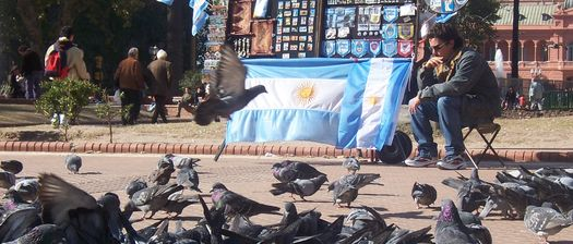 Pigeons in Plaza de Mayo enjoying the Argentine Flag