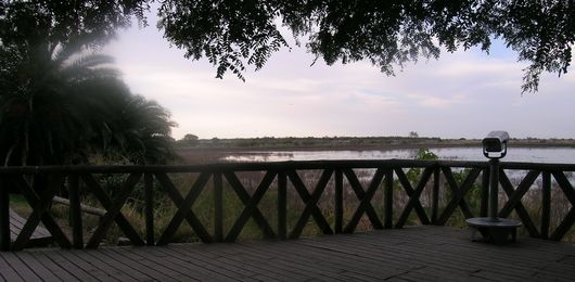 Viewpoint in the Costanera Sur Ecological Reserve