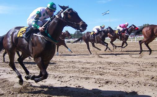 Palermo Hippodrome Horse Racing